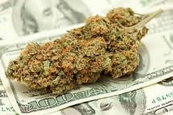 Marijuana investment tips